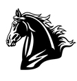 Horse head black and white vector