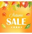 Autumn sale concept vector
