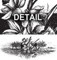 Antique landscape engraving vector