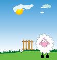 Sheeps on the farm cartoon vector