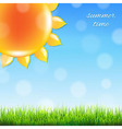 Summer sun with grass vector