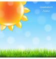Summer sun with grass vector