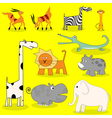 African wild animals vector