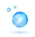 Blue shiny water drop vector