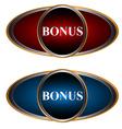 Two bonus icons vector