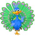 Cartoon peacock vector