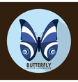 Card butterfly vector