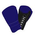 Boxiing gloves vector