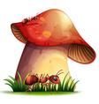 Closeup mushroom vector