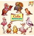 Set of cute birds turkey goose flamingo vector