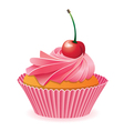 Pink cupcake with red cherry vector