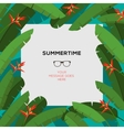 Summer tropical template with palm leaves vector