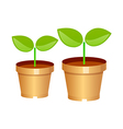 Icon sprout plant vector