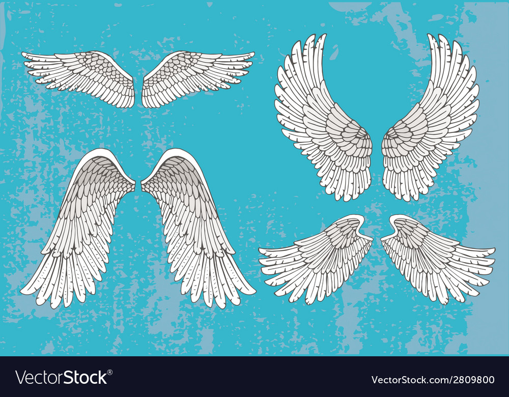 Hand drawn white wings vector | Price: 1 Credit (USD $1)