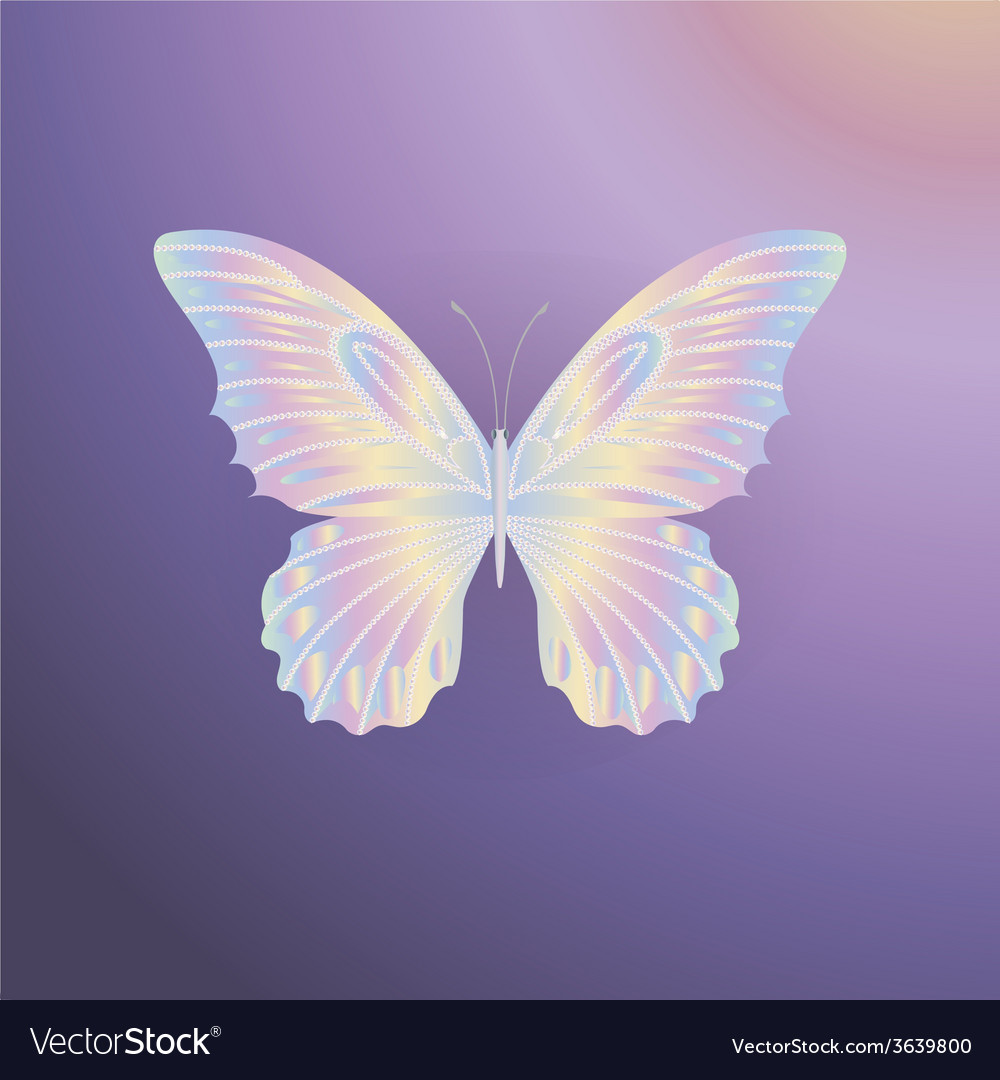 Pearl lace butterfly on purple background vector | Price: 1 Credit (USD $1)