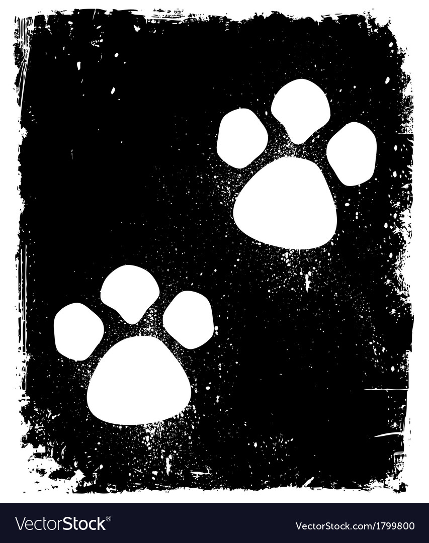Traces of the animal on pavement vector | Price: 1 Credit (USD $1)
