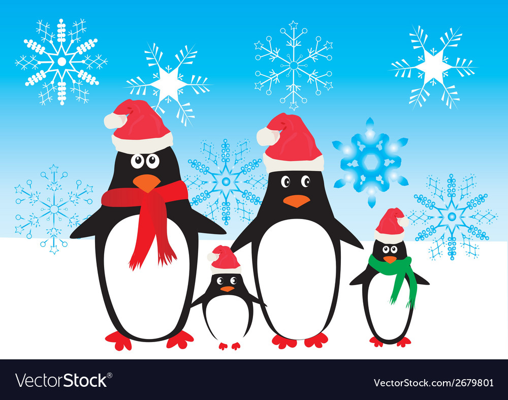 Funny penguins vector | Price: 1 Credit (USD $1)