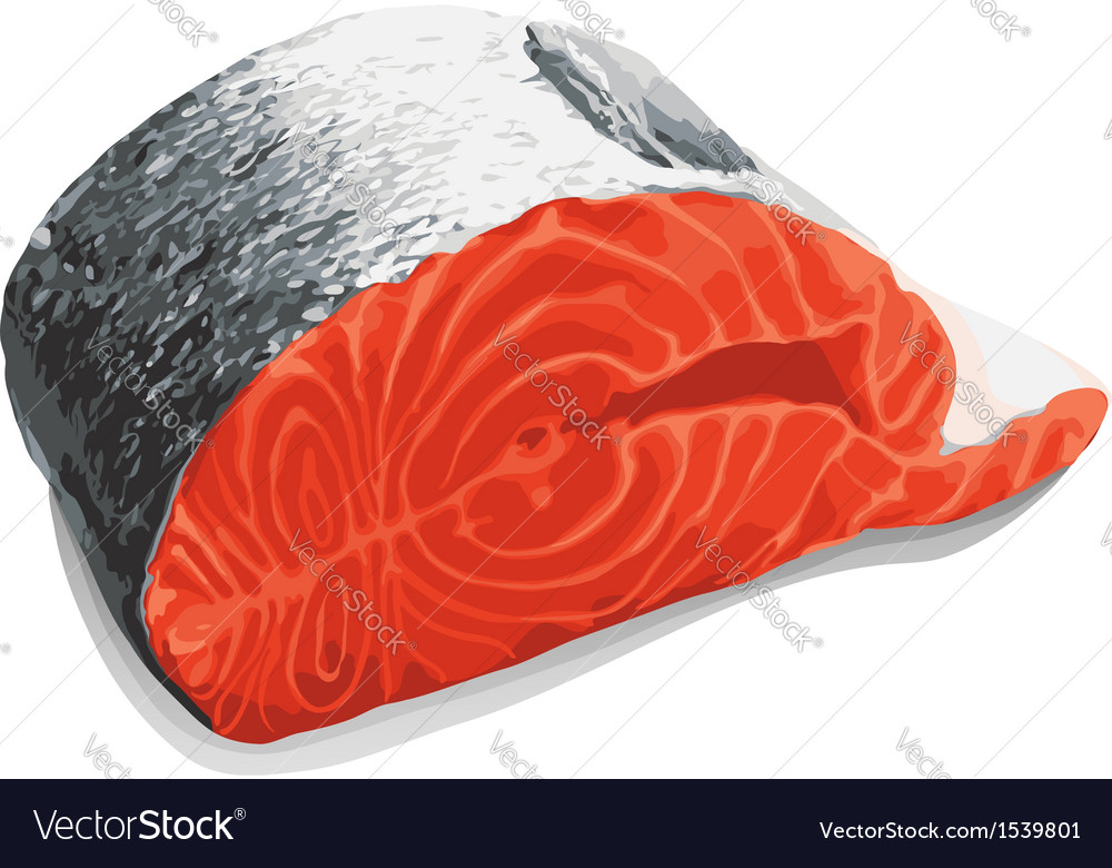 Slice of salmon vector | Price: 1 Credit (USD $1)