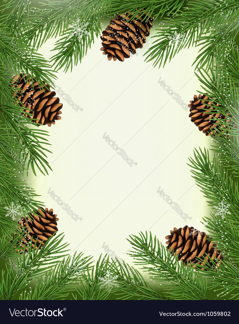 Frame made of christmas tree branches with pine vector | Price: 1 Credit (USD $1)