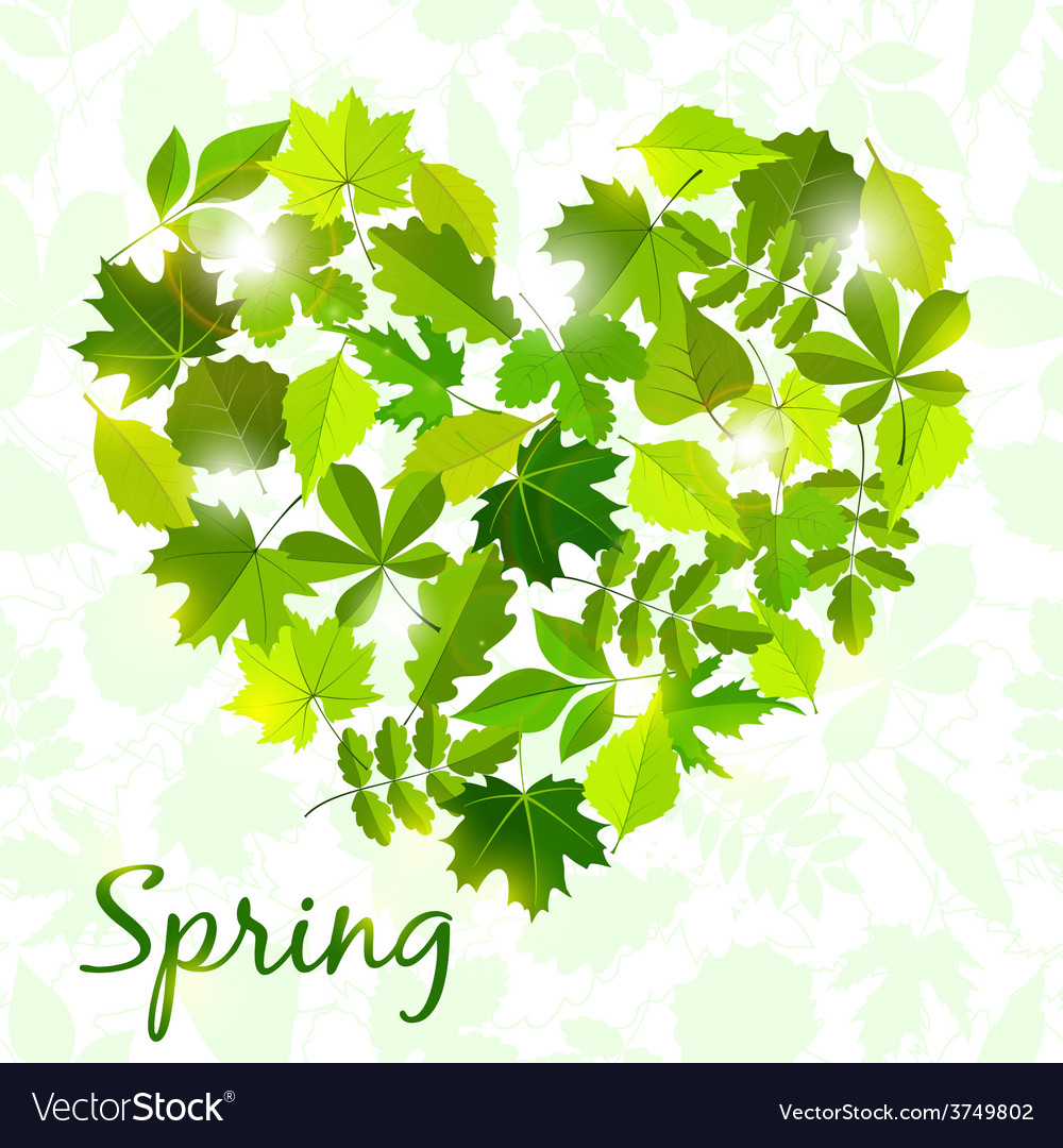 Spring background from leaves vector | Price: 1 Credit (USD $1)