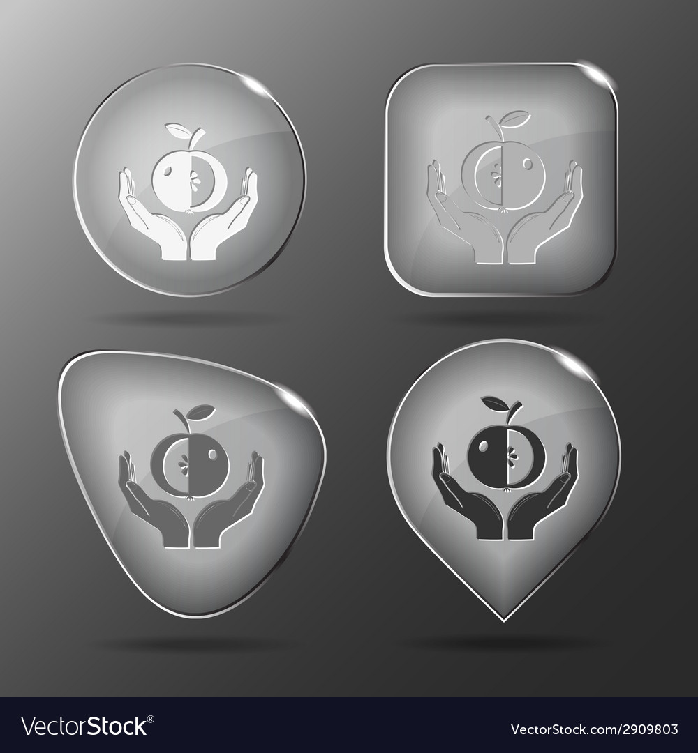 Apple in hands glass buttons vector | Price: 1 Credit (USD $1)