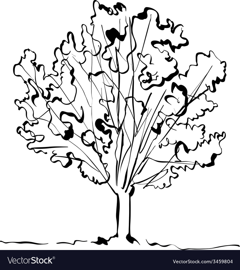 Monochrome hand drawn tree on white background vector | Price: 1 Credit (USD $1)