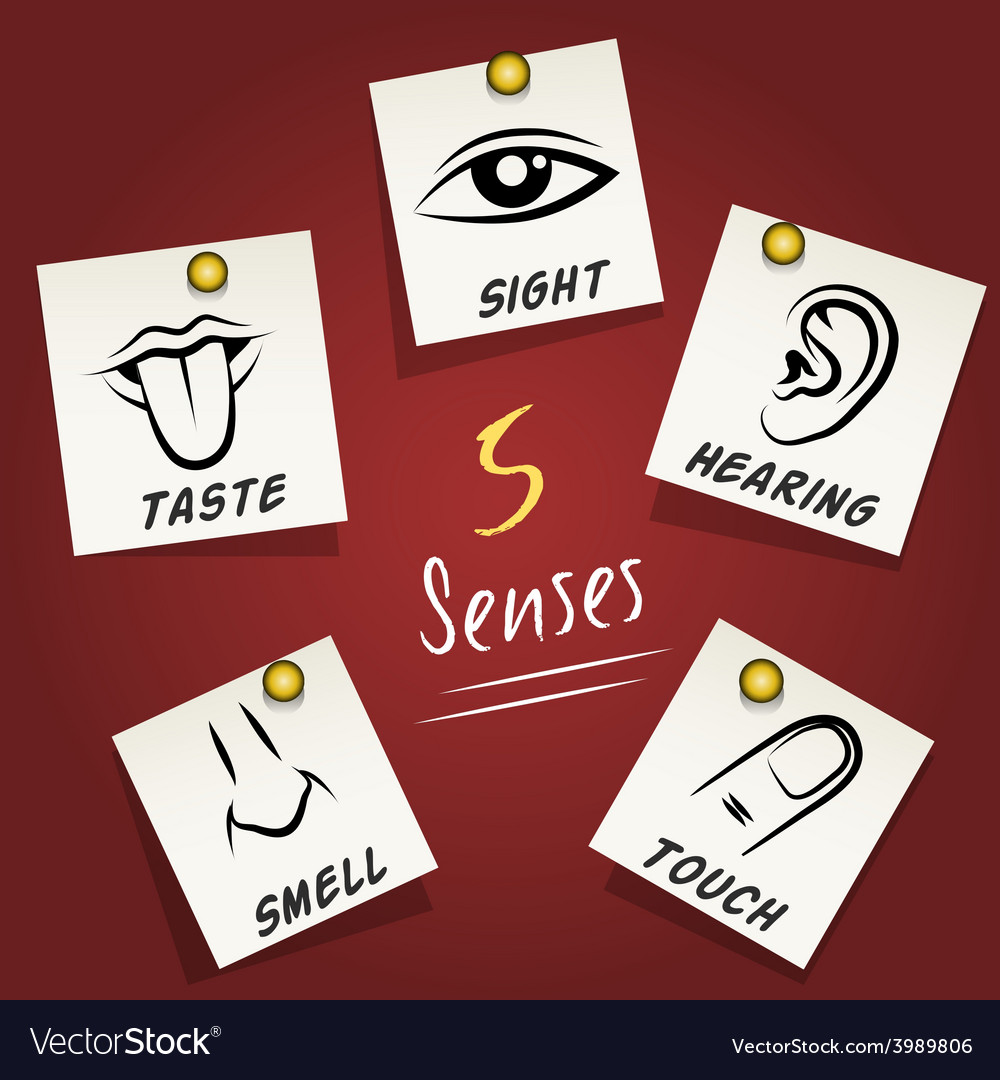 Set of senses icons on sticky notes vector | Price: 1 Credit (USD $1)