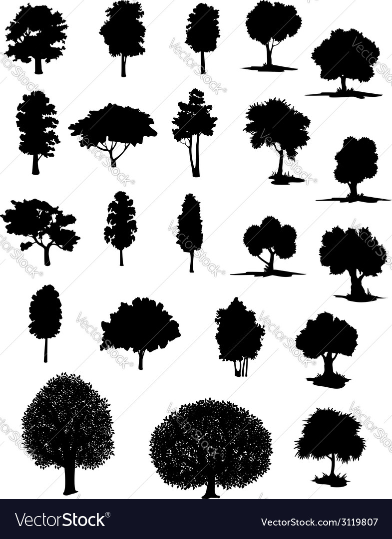 Silhouettes of assorted trees vector | Price: 1 Credit (USD $1)