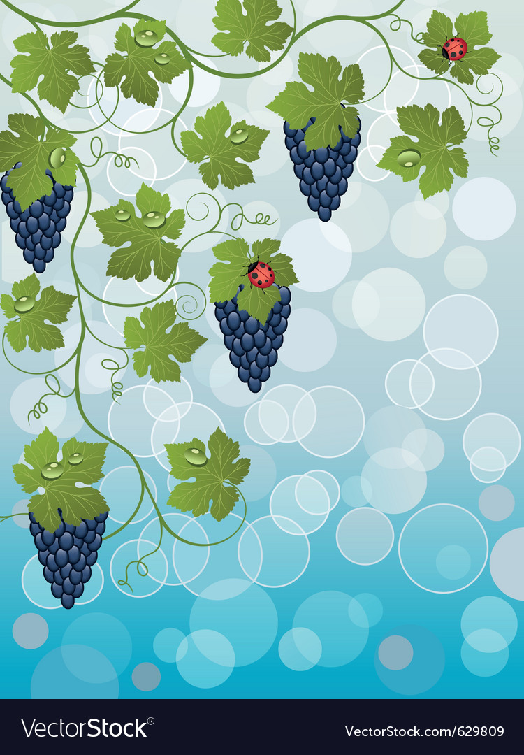 Floral background with vine vector   Price: 1 Credit (USD $1)