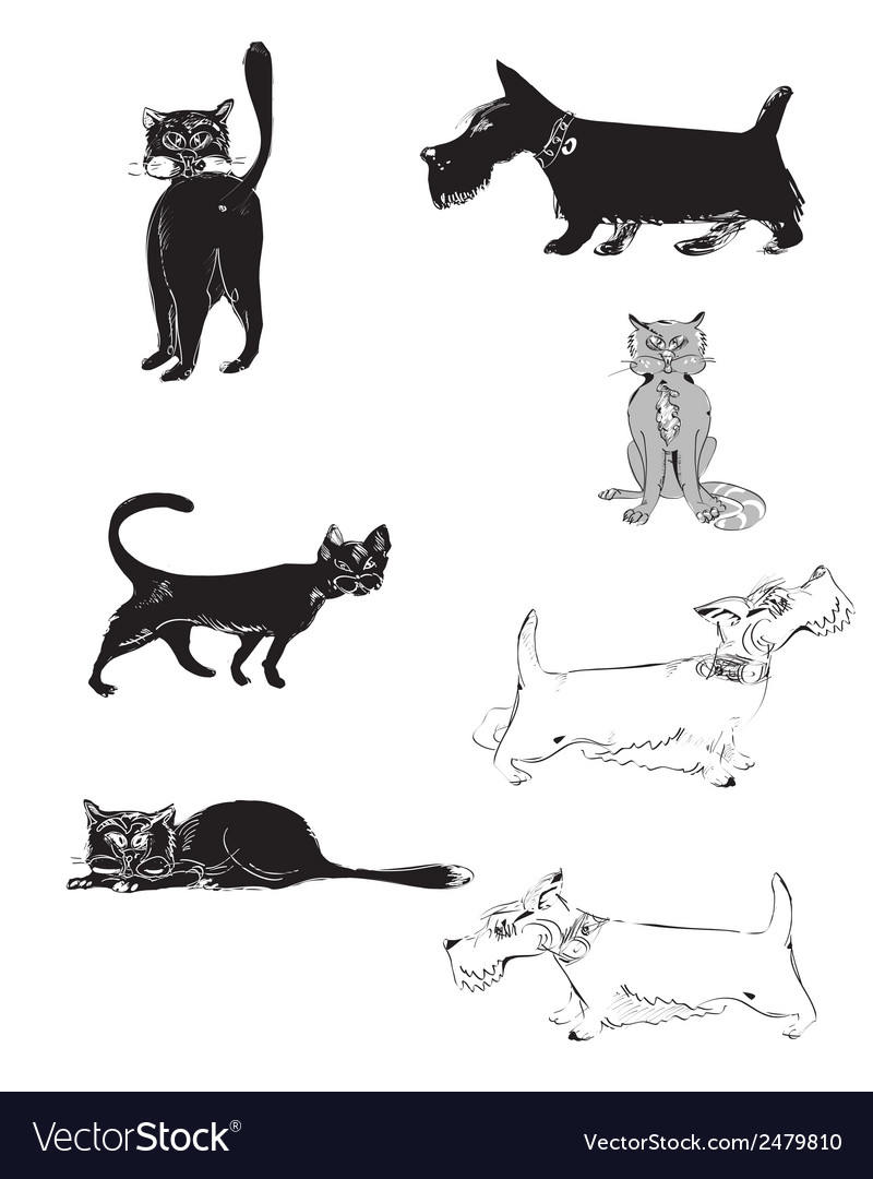 Cats and dogs vector   Price: 1 Credit (USD $1)