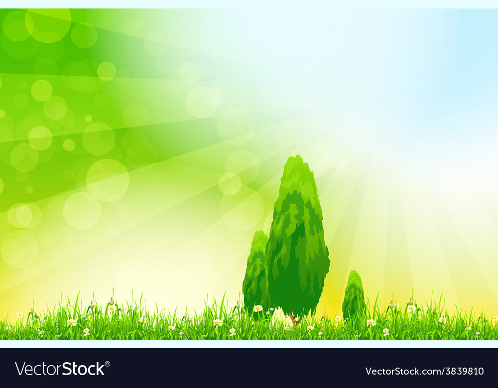 Fresh green grass with yellow bokeh vector | Price: 1 Credit (USD $1)
