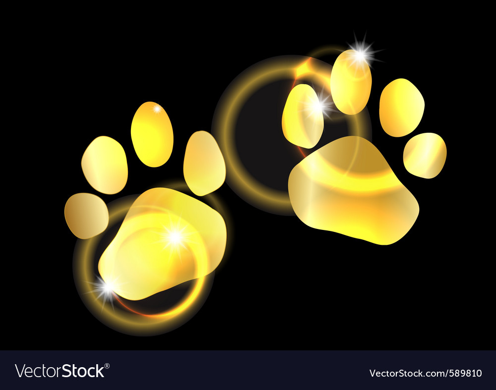 Golden animal feet vector | Price: 1 Credit (USD $1)