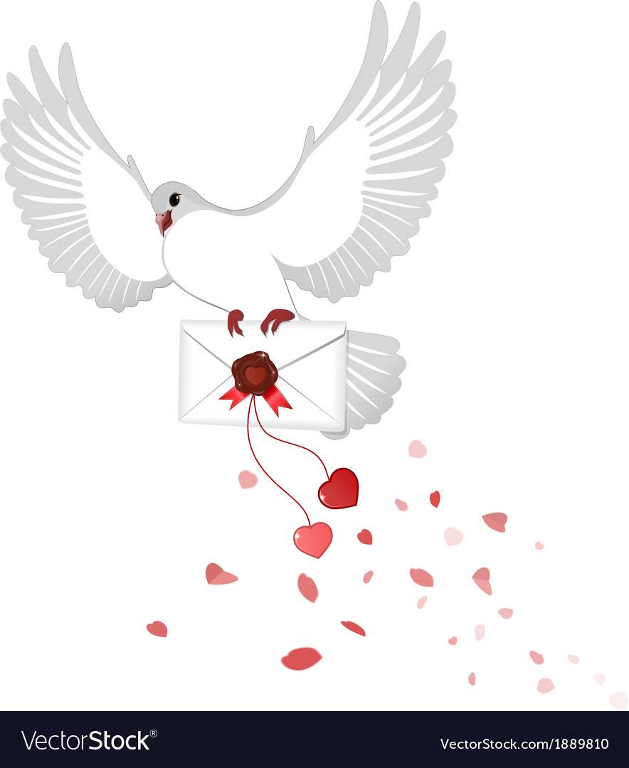 Pigeon carries a love letter vector   Price: 1 Credit (USD $1)