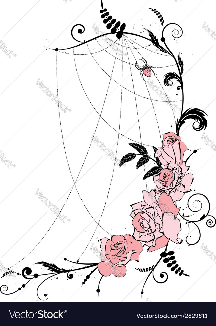 Roses and spiderweb vector | Price: 1 Credit (USD $1)