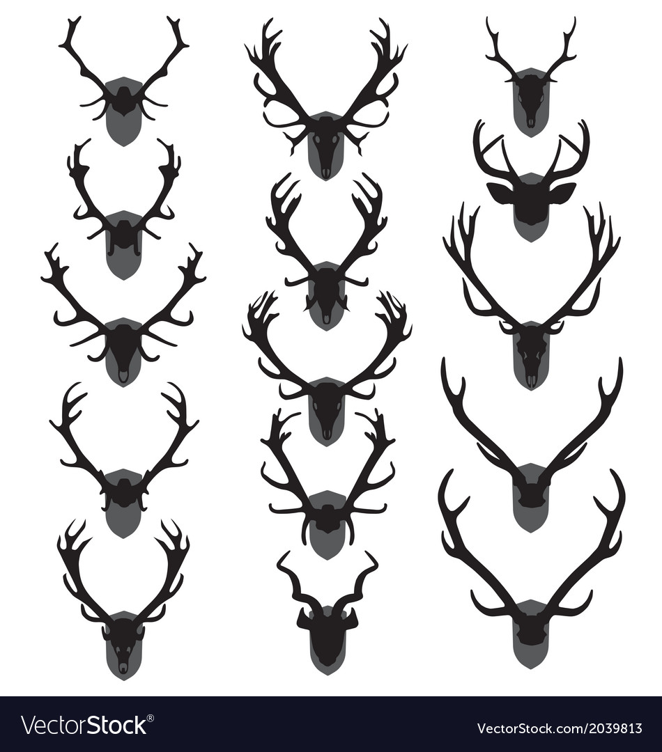 Antler trophies vector | Price: 1 Credit (USD $1)