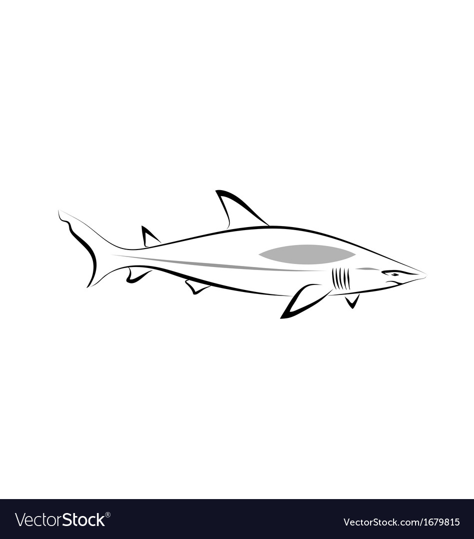 Stylized shark vector | Price: 1 Credit (USD $1)