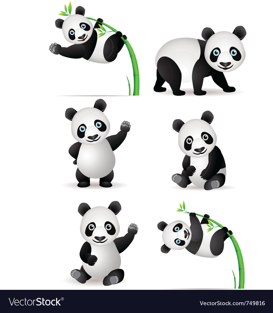Panda cartoon collection vector | Price: 1 Credit (USD $1)