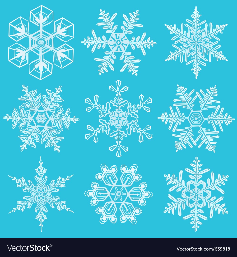 Set of crystal snowflakes elements for designers vector | Price: 1 Credit (USD $1)