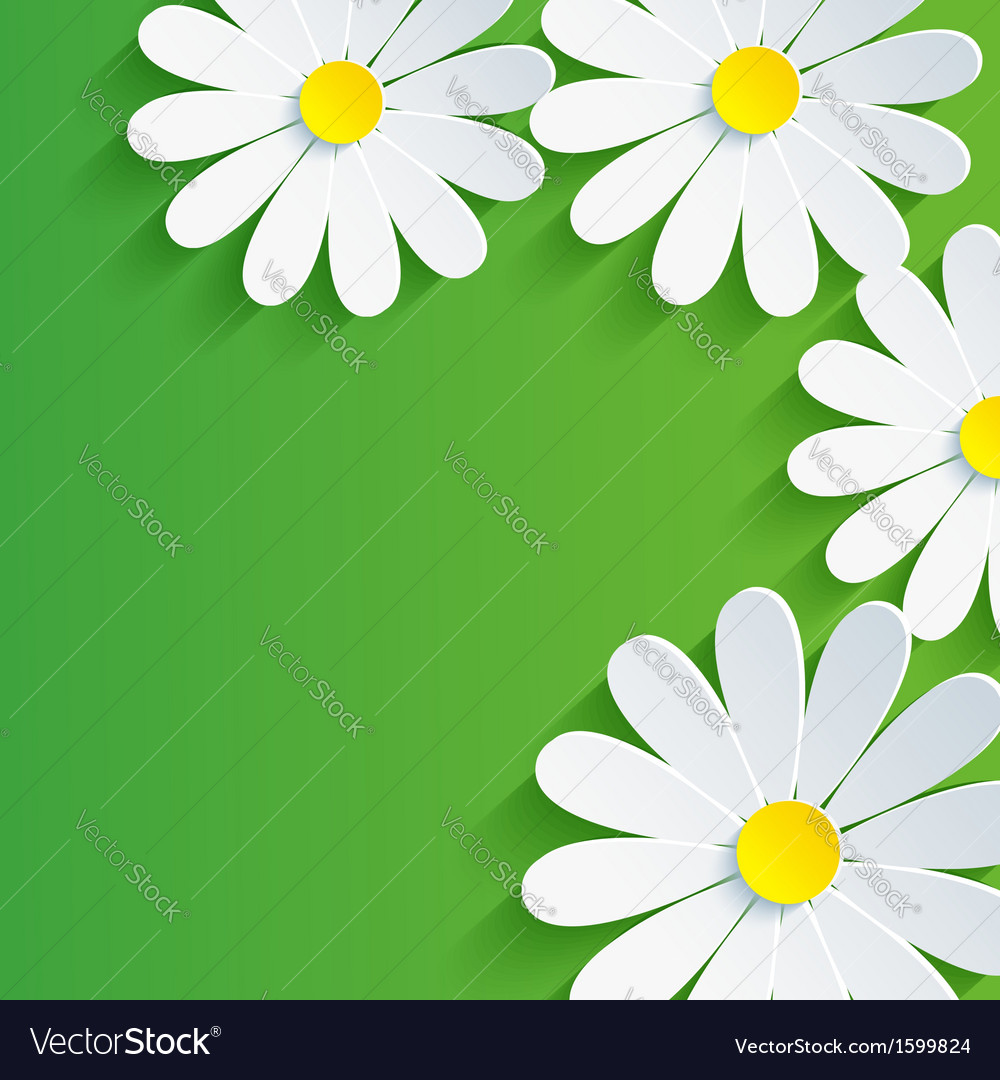 3d flower chamomile spring abstract background vector | Price: 1 Credit (USD $1)
