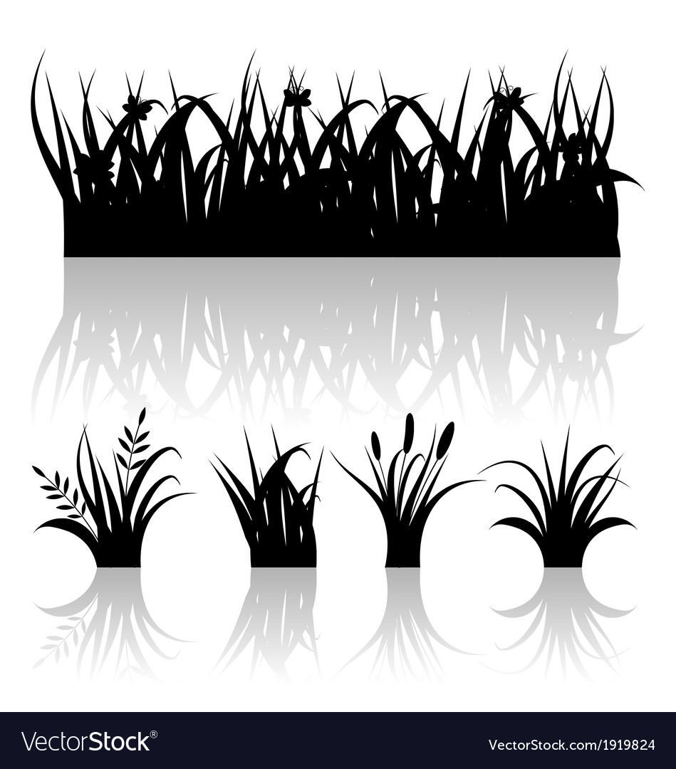 Set silhouette of grass with reflection isolated vector | Price: 1 Credit (USD $1)