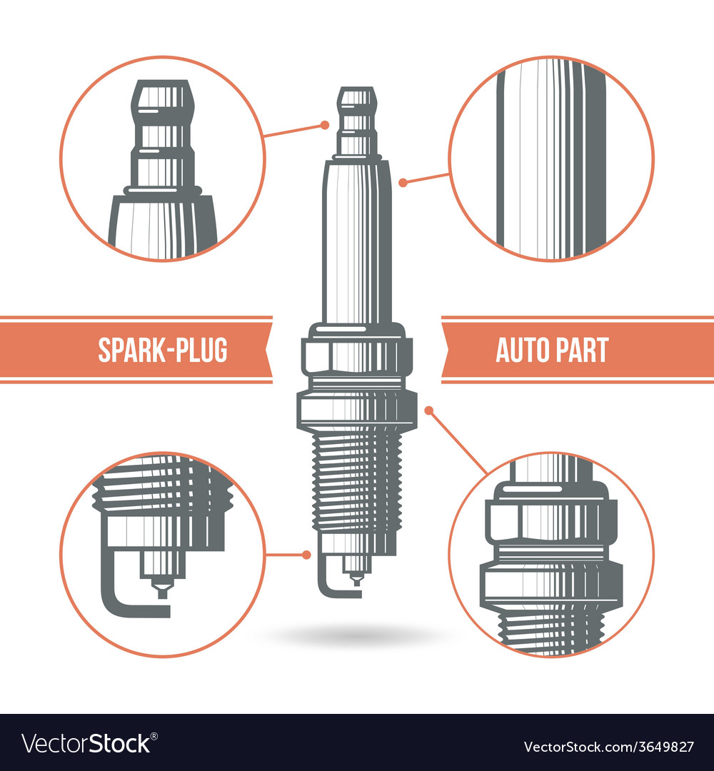 Spark plug auto part vector | Price: 1 Credit (USD $1)