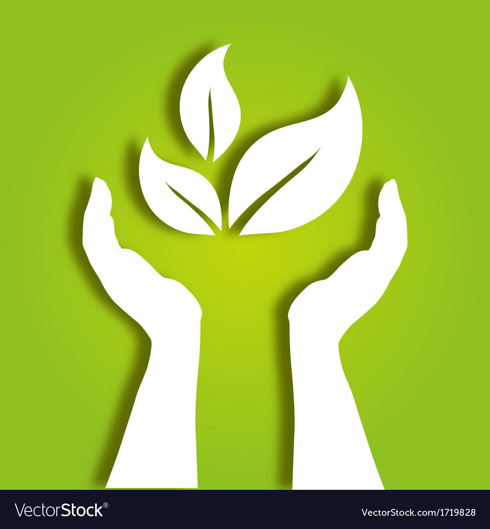 Hands caring leaves vector | Price: 1 Credit (USD $1)