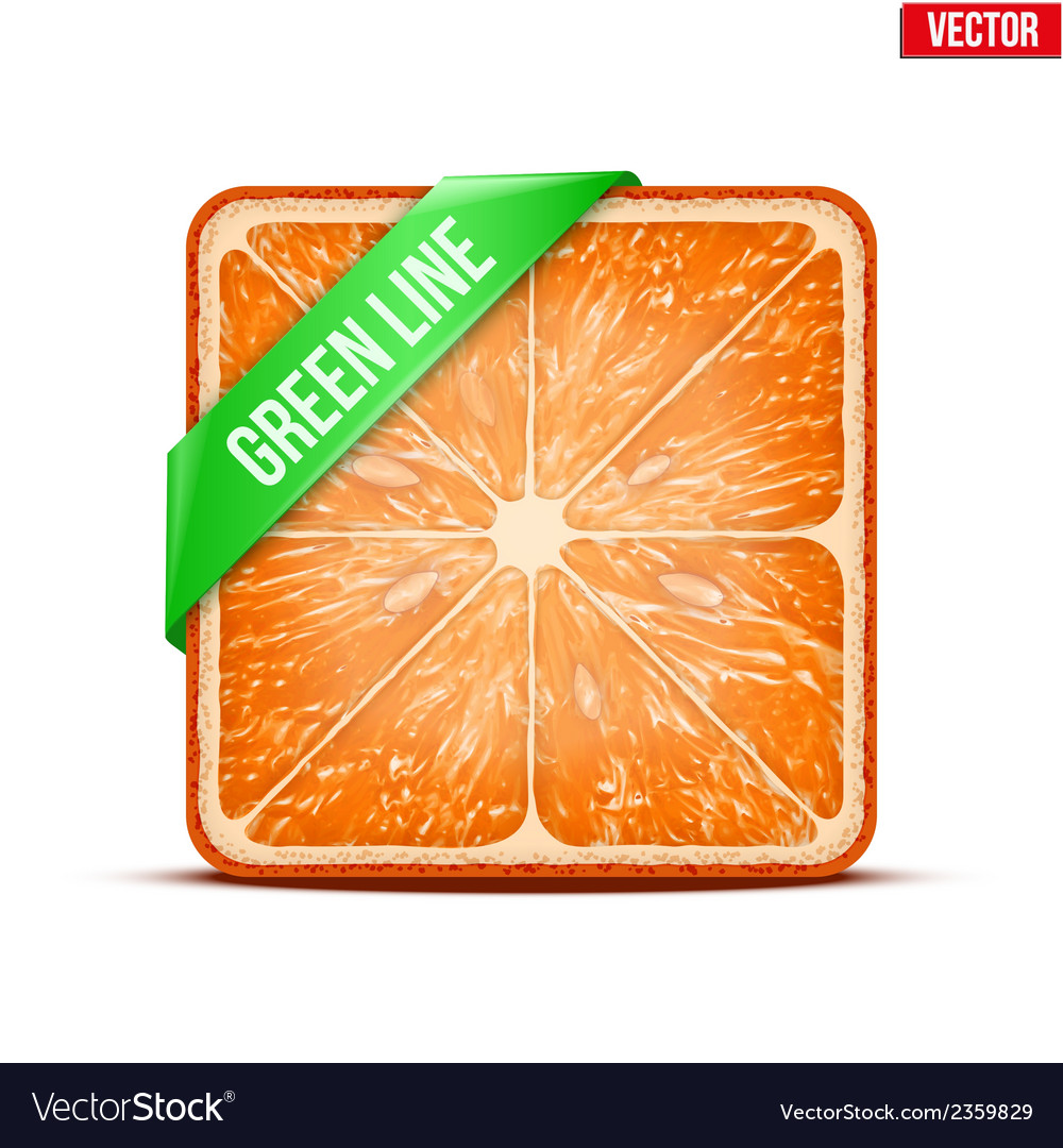 Square slice of grapefruit green line vector | Price: 1 Credit (USD $1)