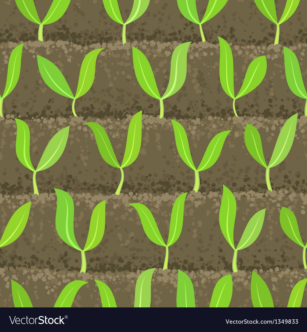 Sprout shoot vegetable patches in row seamless vector | Price: 1 Credit (USD $1)