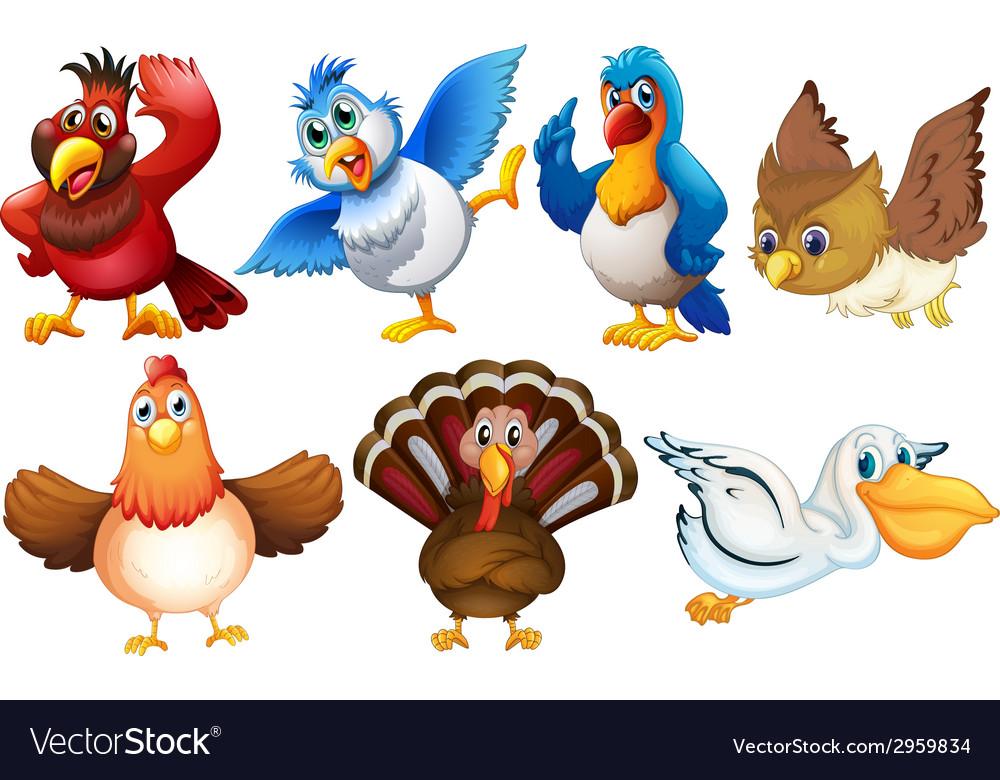 Birds vector   Price: 1 Credit (USD $1)