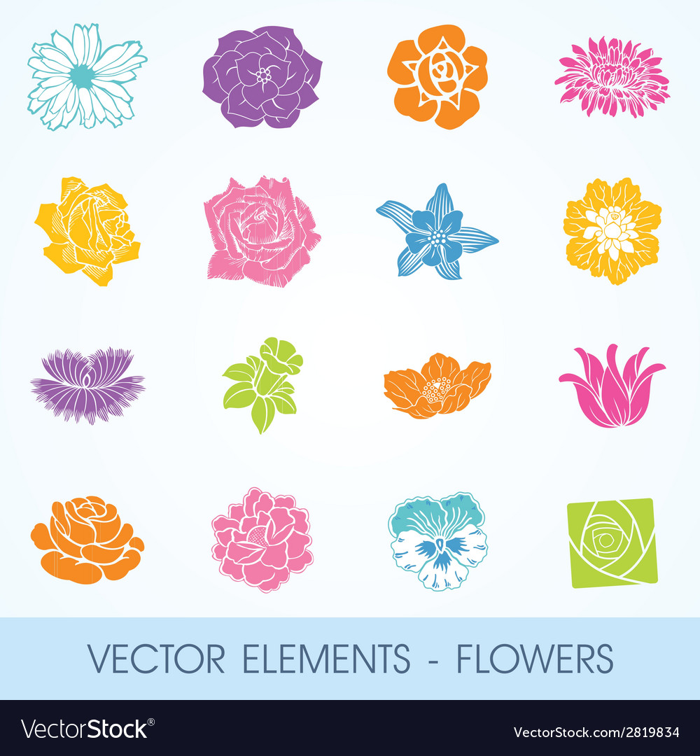 Elements - flowers vector | Price: 1 Credit (USD $1)