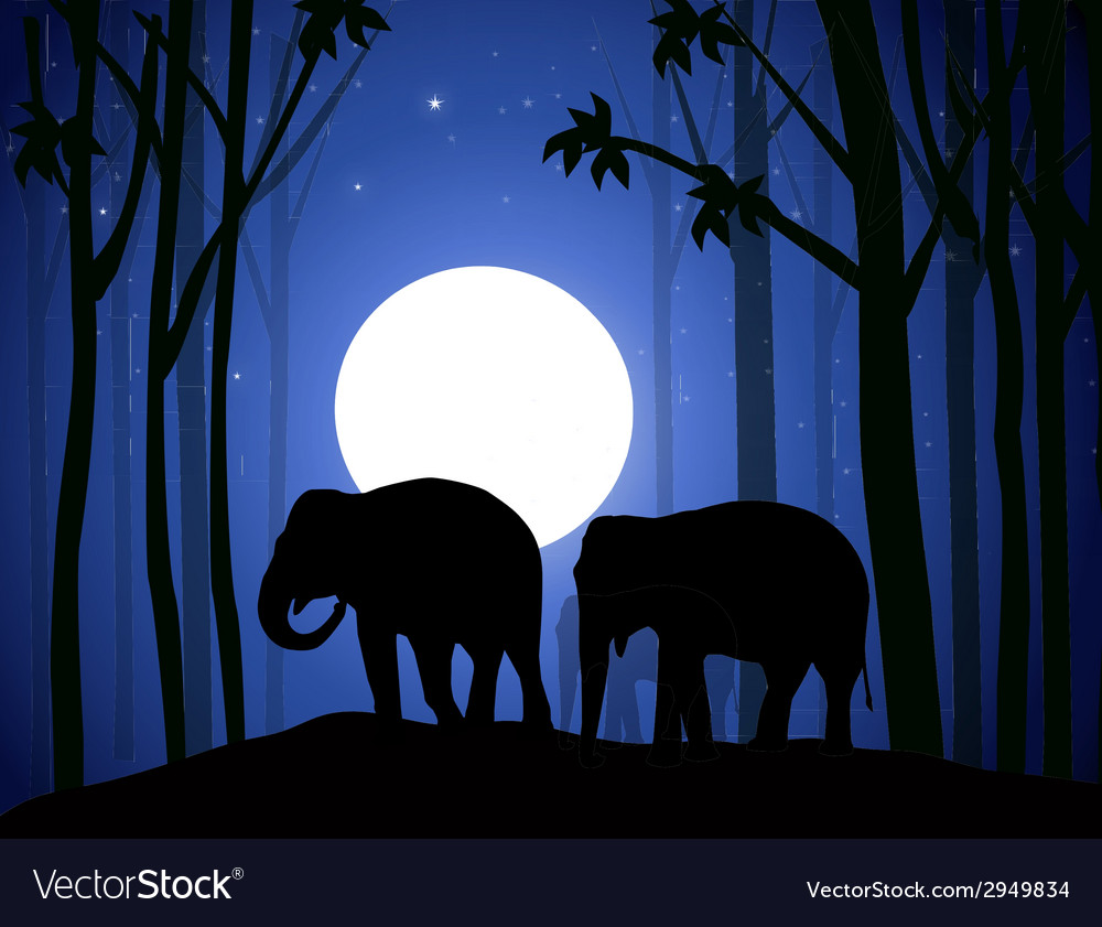 Elephants in night forest vector | Price: 1 Credit (USD $1)