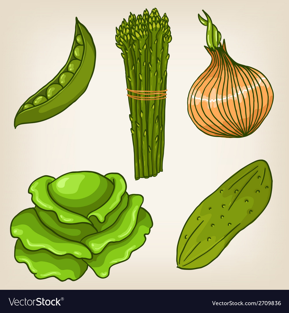 Set of cute hand drawn vegetables vector | Price: 1 Credit (USD $1)