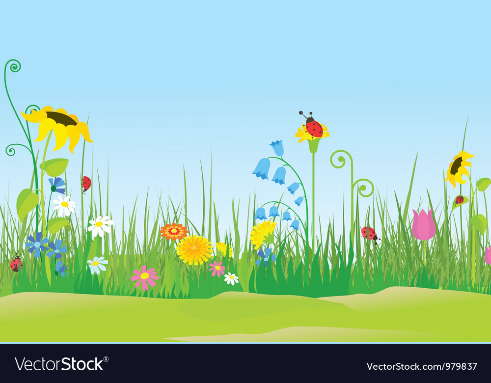 Flower meadow with ladybug vector | Price: 1 Credit (USD $1)