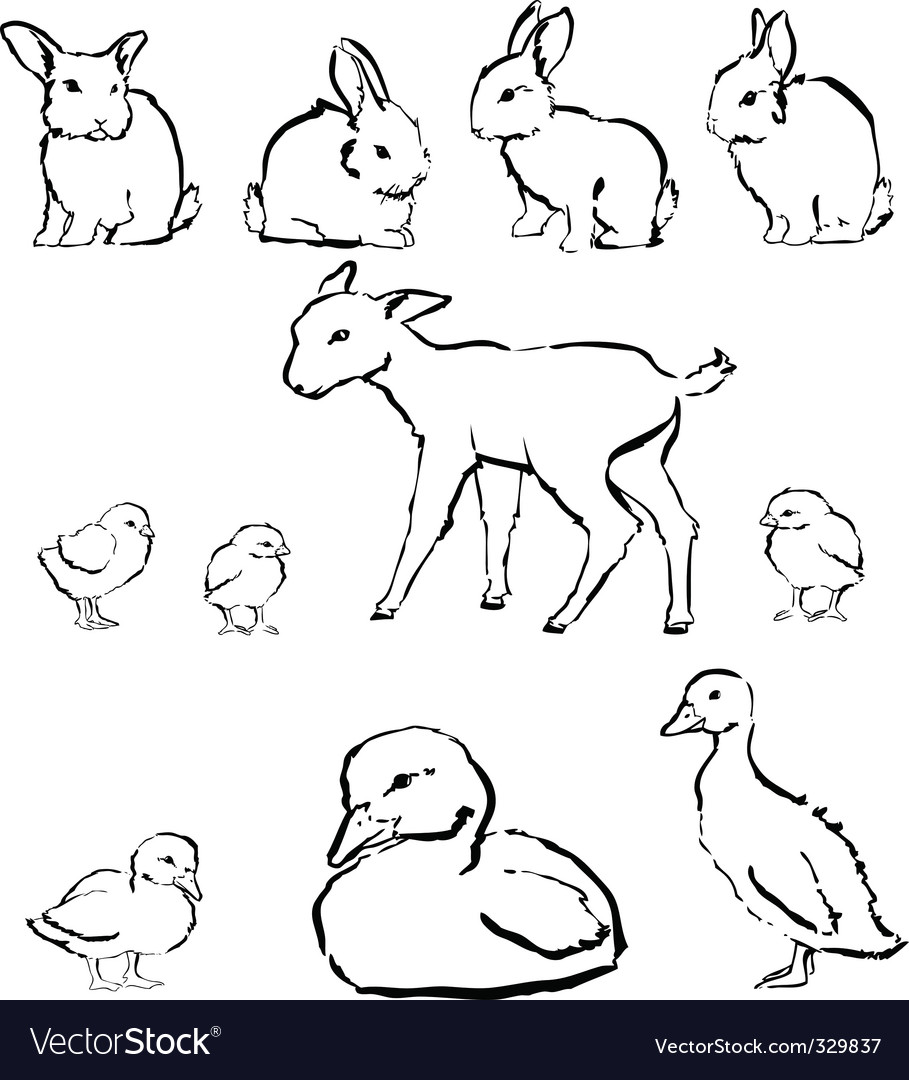 Spring baby animals vector | Price: 1 Credit (USD $1)